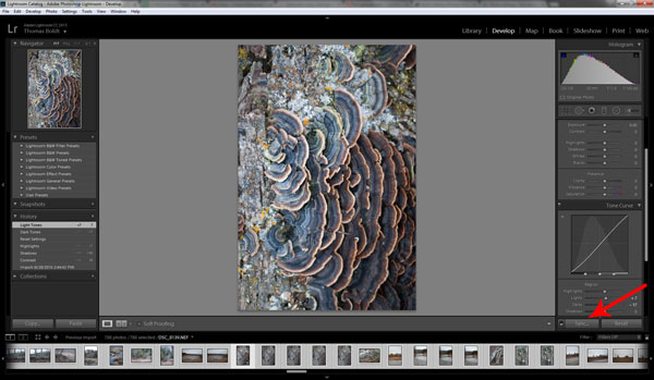5 Time-Saving Lightroom Tips for a Faster Workflow
